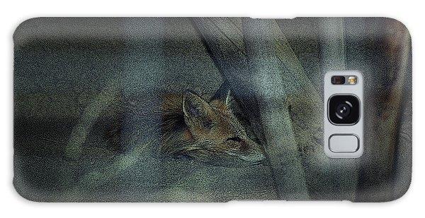Sleeping Fox Galaxy Case