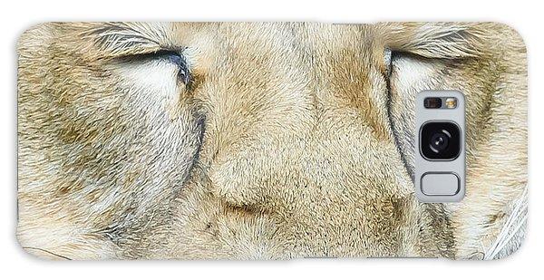 Sleeping Lion Galaxy Case
