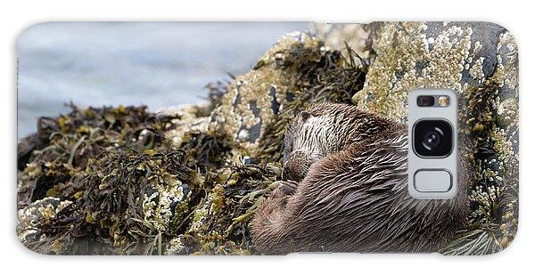 Sleeping Otter Galaxy Case