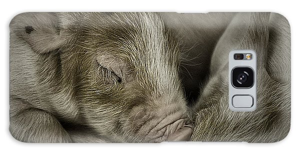 Sleeping Piglet Galaxy Case
