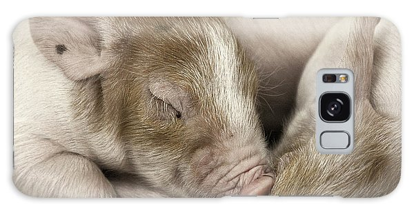 Sleeping Piglet Galaxy Case