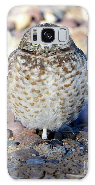 Sleepy Burrowing Owl Galaxy Case