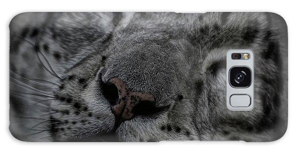 Sleepy Cat Galaxy Case by Brad Allen Fine Art