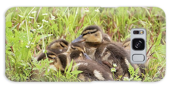Sleepy Ducklings Galaxy Case