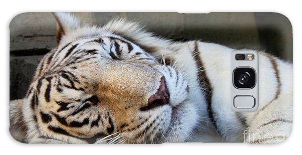 Sleepy Kitty Galaxy Case