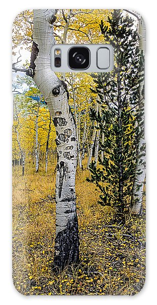Slightly Crooked Aspen Tree In Fall Colors, Colorado Galaxy Case by John Brink