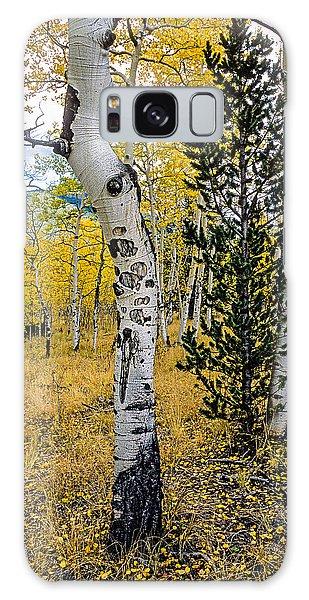 Slightly Crooked Aspen Tree In Fall Colors, Colorado Galaxy Case