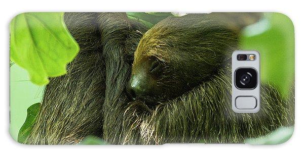 Sloth Sleeping Galaxy Case