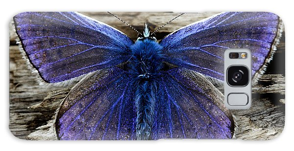 Small Blue Butterfly On A Piece Of Wood In Ireland Galaxy Case