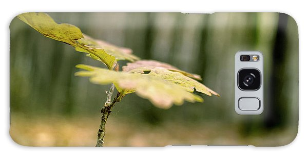 Small Branch With Yellow Leafs Close-up Galaxy Case by Vlad Baciu