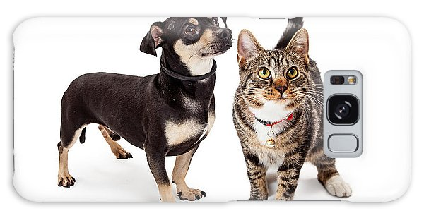 Small Dog And Cat Looking Up Together Galaxy Case