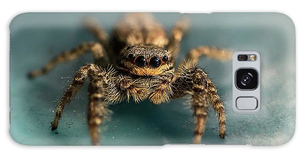 Small Jumping Spider Galaxy Case