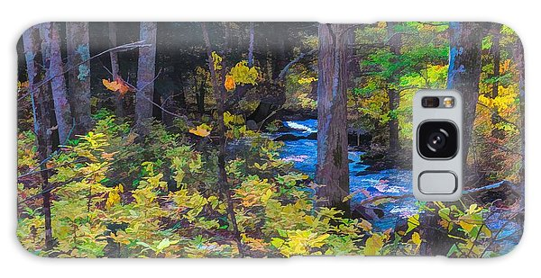 Small Stream Through Autumn Woods Galaxy Case