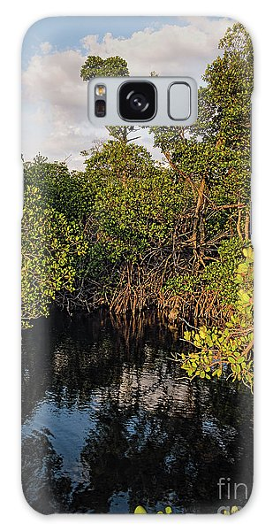 Small Waterway In Vitolo Preserve, Hutchinson Isl  -29151 Galaxy Case
