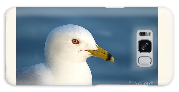 Smiling Seagull Galaxy Case