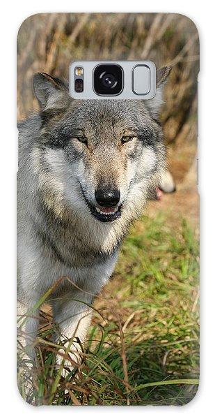 Smiling Wolf Galaxy Case