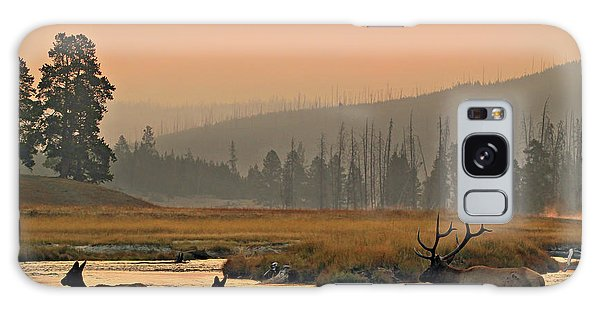 Galaxy Case featuring the photograph Smokey Elk Crossing by Wesley Aston