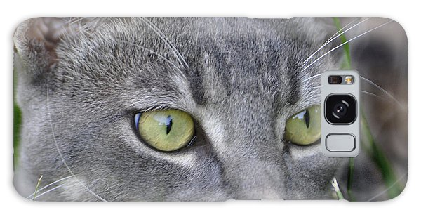 Smokey's Stare Galaxy Case