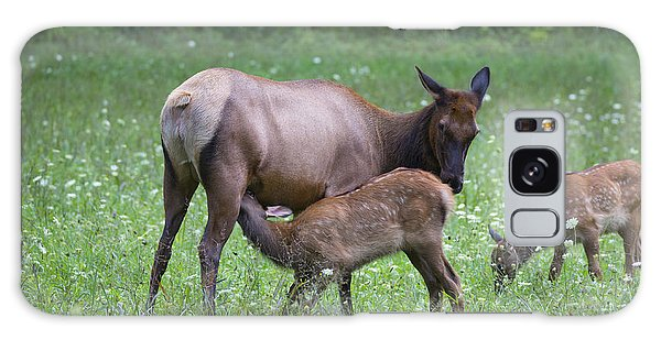 Smoky Mountain National Park Elk Cow Nursing Calf Galaxy Case