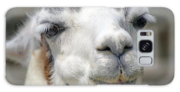 Smug Llama Galaxy Case by Kenneth Albin