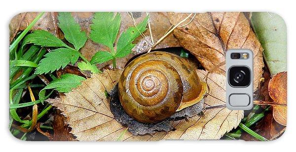 Snail Home Galaxy Case