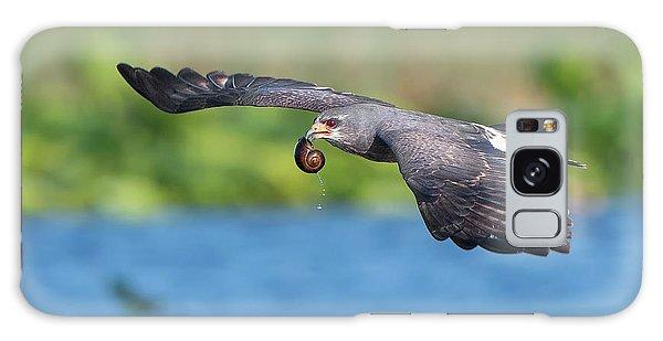 Snail Kite Returning Galaxy Case