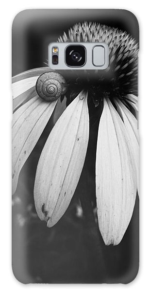 Snail Galaxy Case