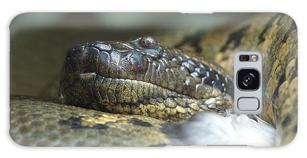 Snake Galaxy Case