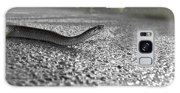 Snake In The Sun Galaxy Case