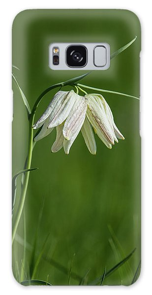 Grass Snake Galaxy Case - Snake's Head With Two White Bells by Torbjorn Swenelius