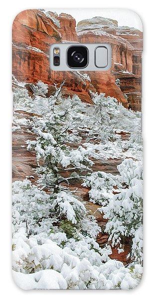 Snow 06-051 Galaxy Case by Scott McAllister