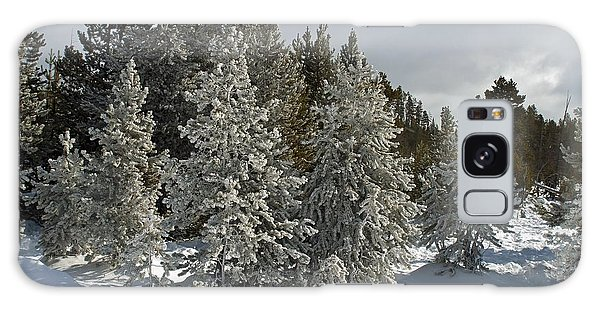 Snow And Ice Covered Evergreens At Sunset Lake  Galaxy Case