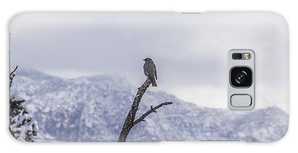 Snow Bird Galaxy Case by Laura Pratt