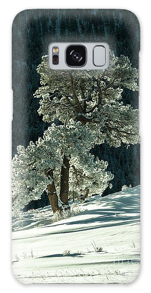 Snow Covered Tree - 9182 Galaxy Case