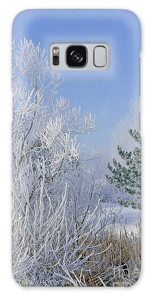2a357 Snow Covered Trees At Alum Creek State Park Galaxy Case