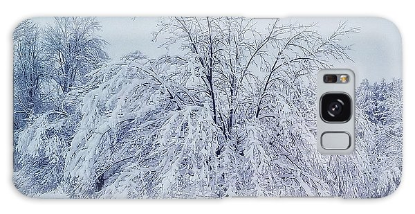 Snow Encrusted Tree Galaxy Case