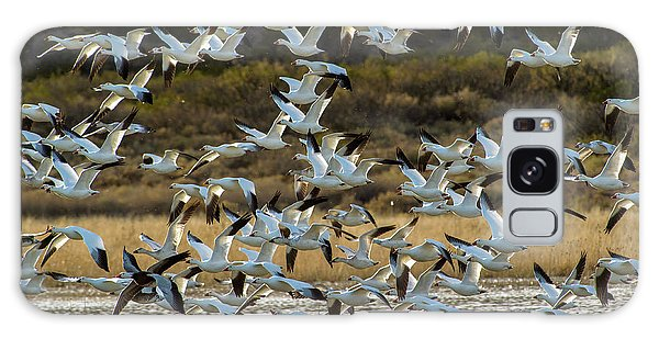 Snow Geese Flock In Flight Galaxy Case