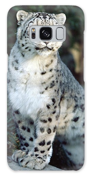 Galaxy Case featuring the photograph Snow Leopard Uncia Uncia Portrait by Gerry Ellis