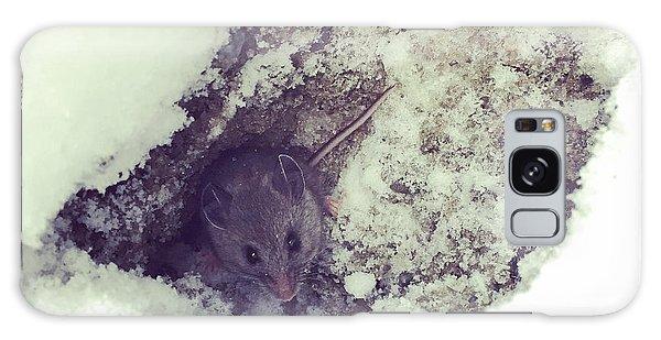 Snow Mouse Galaxy Case