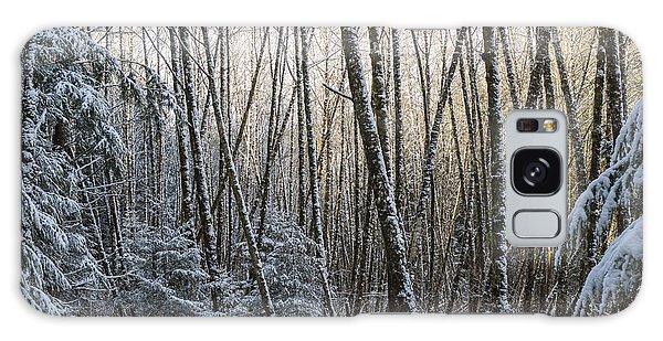 Snow On The Alders Galaxy Case