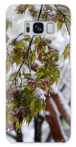 snow on the Cherry blossoms Galaxy Case by Chris Flees