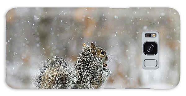 Snow Squirrel Galaxy Case