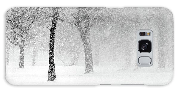 Snow Storm At Starved Rock Galaxy Case