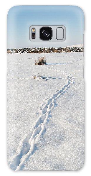 Snow Tracks Galaxy Case