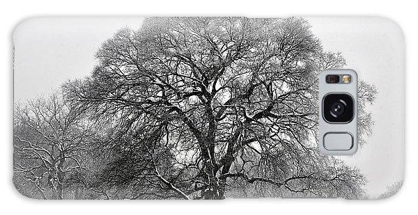 Snow Tree 2 Galaxy Case