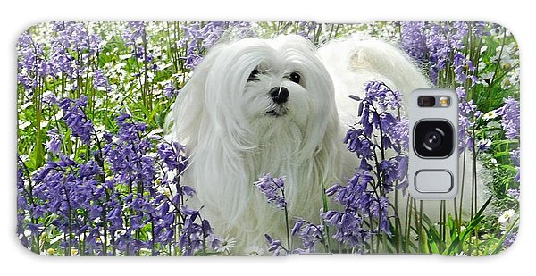 Snowdrop In The Bluebell Woods Galaxy Case by Morag Bates