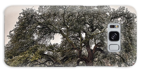 Snowfall On Emancipation Oak Tree Galaxy Case