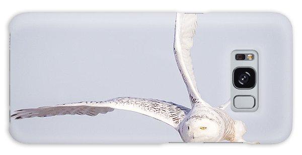 Snowy Owl Flying Dirty Galaxy Case
