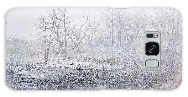 Snowmist Marsh Galaxy Case