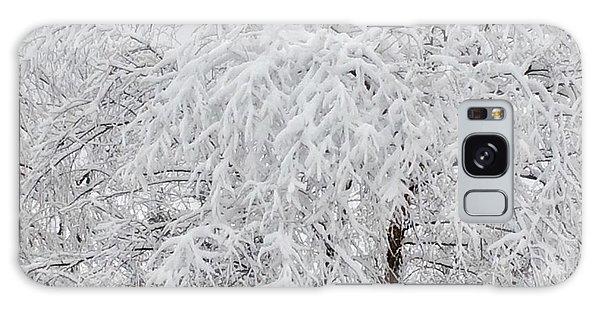 Snowy Branches Galaxy Case